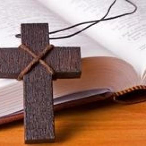 Johannes 10,11-16
